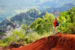 Turista masculino joven que disfruta de la visión en el barranco de Waimea, Kauai, Hawaii Imágenes de archivo libres de regalías
