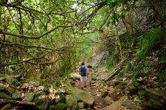 Turista masculino novo que caminha na fuga bonita do laço de Pololu situada perto de Kapaau, Havaí fotografia de stock