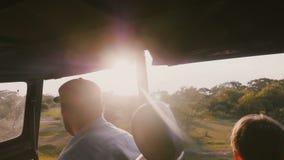 Turista masculino relaxado feliz novo que aprecia o passeio bonito no carro da excursão do safari, luz solar da floresta do por d video estoque