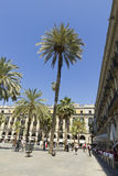 Turista na plaza real em Barcelona, Espanha Imagem de Stock