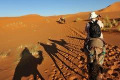 Turista no camelo imagens de stock