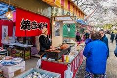 Turista no parque do castelo de Hirosaki imagens de stock