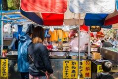 Turista no parque do castelo de Hirosaki fotos de stock