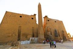 Turista no templo de Luxor - Egito imagens de stock