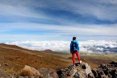 Turista que admira la vista impresionante del volcán de Mauna Loa en la isla grande de Hawaii Foto de archivo