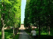 Turista que anda através dos jardins de Drottningholm, Suécia imagens de stock royalty free