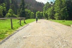 Turista que camina abajo del camino hacia el valle del cielisko del› de KoÅ Fotos de archivo