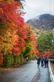 Turista que camina en calle del arce del otoño en la región de Kawaguchiko Fotografía de archivo