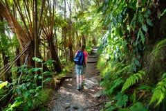 Turista que caminha na fuga de Kilauea Iki no parque nacional dos vulcões na ilha grande de Havaí fotos de stock