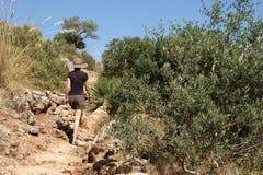 Turista que sube en la reserva de naturaleza del cíngaro Sicilia Italia Imagenes de archivo