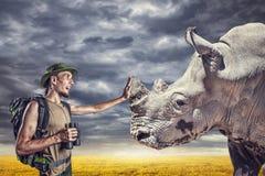 Turista que toca no rinoceronte Fotografia de Stock Royalty Free