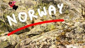 Turista que toma a foto do ponto de vista Noruega de Dalsnibba Fotos de Stock