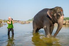 Turista que toma las imágenes del elefante Fotos de archivo libres de regalías