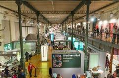 Turista que visita el museo de ciencia nacional Fotos de archivo libres de regalías