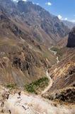 Turista su trekking nel Perù Fotografia Stock Libera da Diritti