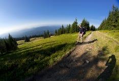 Turista su un percorso della montagna durante il giorno pieno di sole Fotografie Stock Libere da Diritti