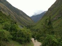 Turista sulla valle della traccia del Inca Fotografie Stock