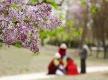 Turistas chinos en la estación de la excursión de la primavera imágenes de archivo libres de regalías