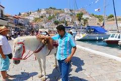 Turistas con el caballo - islas de Grecia Foto de archivo libre de regalías
