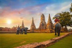 Turistas con los elefantes en el templo de Wat Chaiwatthanaram en el parque histórico de Ayuthaya, Tailandia Foto de archivo