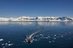 Turistas da aventura - baía de Cuverville - a Antártica foto de stock