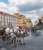 Turistas de espera do transporte do cavalo em Praga fotos de stock royalty free