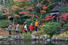 Turistas de Nara fotografia de stock royalty free