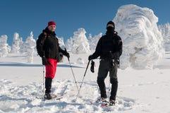 Turistas do inverno foto de stock