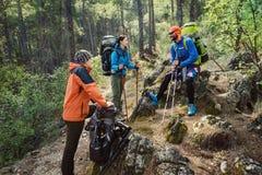Turistas dos amigos que caminham no trav real dos povos da floresta da montanha foto de stock