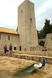 Turistas e pavão velhos do monastério Fotografia de Stock Royalty Free