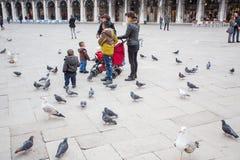 Turistas e pombos foto de stock royalty free