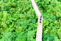 Turistas e visitantes que apreciam a caminhada no pedestre w da caminhada do céu Foto de Stock
