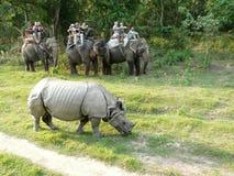 Turistas em um safari do elefante fotos de stock
