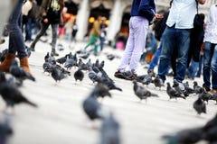 Turistas em Veneza foto de stock royalty free