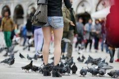 Turistas em Veneza imagens de stock royalty free