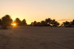 Turistas en dromedarios en la puesta del sol en el desierto Fotos de archivo libres de regalías