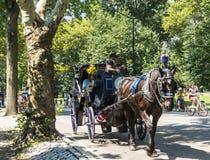 Turistas en el Central Park NYC que monta en un caballo y un cochecillo fotografía de archivo libre de regalías