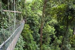 Turistas en el puente suspendido en el paseo del toldo imagen de archivo libre de regalías