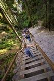 Turistas en la ciudad de la roca de Adrspach Foto de archivo libre de regalías