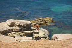 Turistas en la playa de Isulidda Imagenes de archivo