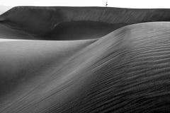 Turistas en las dunas en Maspalomas Imagen de archivo