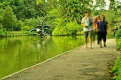 Turistas en los jardines botánicos de Singapur Fotografía de archivo libre de regalías