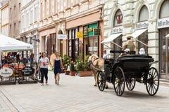 Turistas en un carro del caballo en Bratislava, Eslovaquia Imagen de archivo