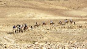 Turistas en un viaje del paseo del camello del desierto de Judaean imagen de archivo libre de regalías