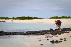 Turistas não identificados que tomam fotos dos caranguejos dentro Fotos de Stock