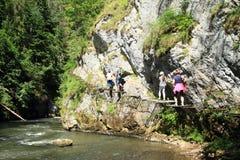 Turistas na descoberta da garganta no paraíso eslovaco imagem de stock royalty free