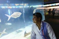 Turistas no aquário - Barcelona, Espanha Fotos de Stock