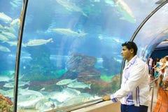Turistas no aquário - Barcelona, Espanha Foto de Stock