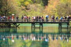 Turistas no parque nacional China de Jiuzhaigou Imagem de Stock Royalty Free