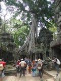 Turistas no templo de Ta Phrom, Angkor, Camboja Foto de Stock Royalty Free
